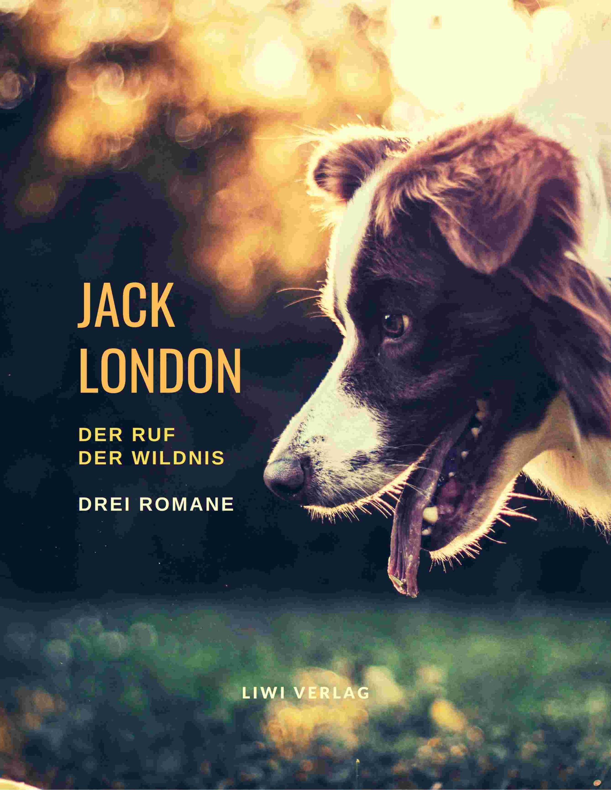 Jack London - Der Ruf der Wildnis – buch